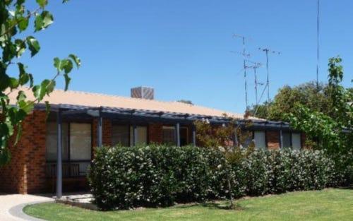 24 Vine Street, Holbrook NSW 2644