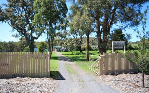 247 Mount Mackenzie Road, Tenterfield NSW 2372