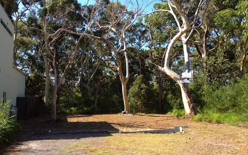 8 Silkwood Walk, Callala Beach NSW 2540