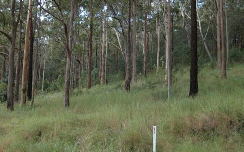 Lot 21, 26 The Lakes Way, Tarbuck Bay NSW 2428