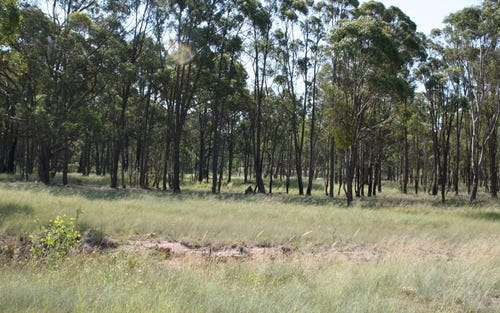 Strathbogie Road, Emmaville NSW 2371
