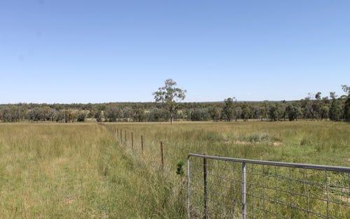 TRIPLE K Burundah Drive, Warialda NSW 2402