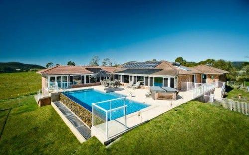 303 Slingsbys Road, Dorrigo NSW 2453