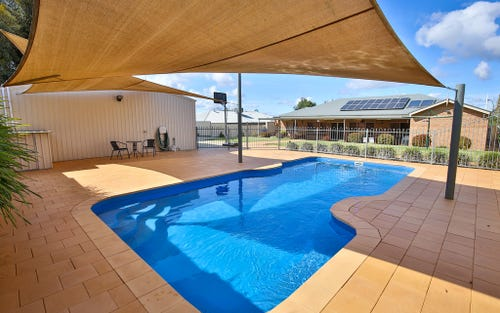 20 Katrina Court, Gol Gol NSW 2738