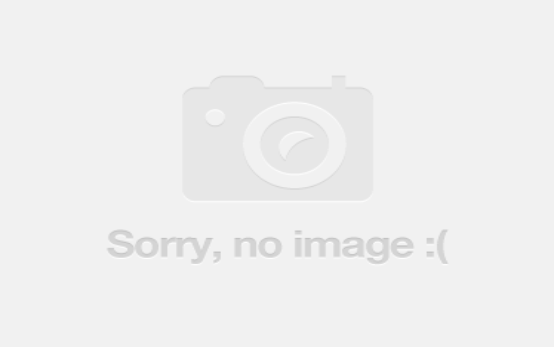 1 Peppermint Street, Aberglasslyn NSW