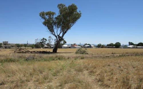 ''Alvin'' Ridge Street, Attunga NSW 2345