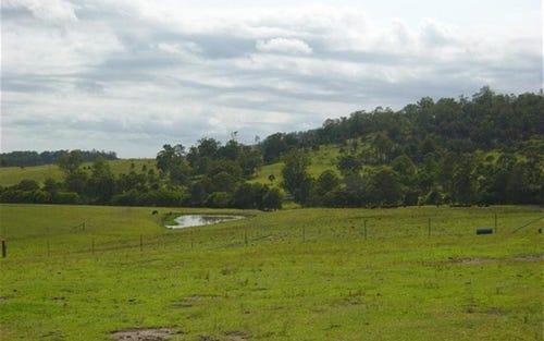2258 Manning Hill Rd, Bunyah NSW 2429