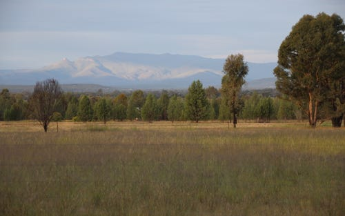 Lot 3-4, 161 Gun Club Road, Narrabri NSW 2390