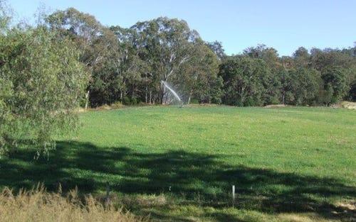 New Koreelah Rd, Legume NSW 2476