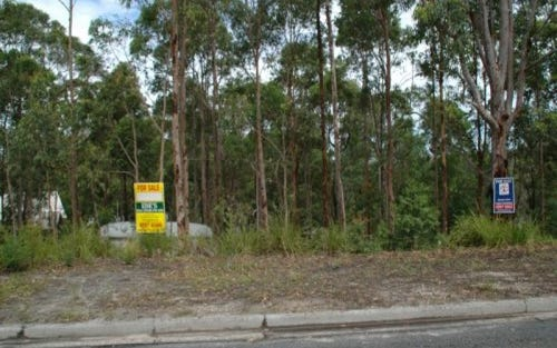 Lot 45, 59 Curlew Crescent, Nerong NSW 2423