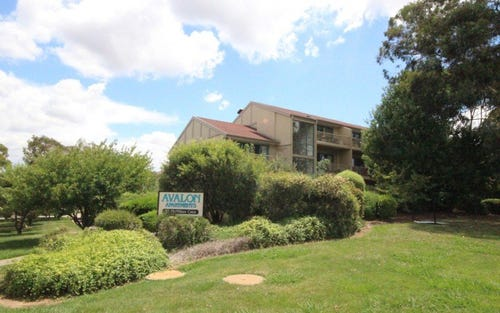 15/53 McMillan Crescent, Griffith ACT