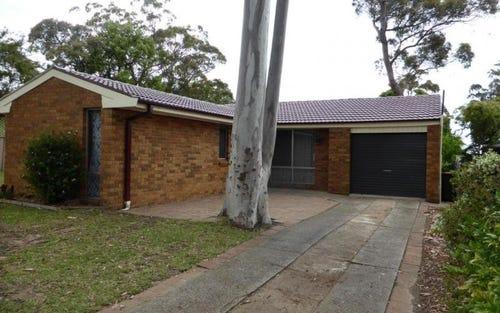 36 Silverwattle Drive, Medowie NSW 2318