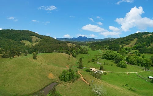 530 Upper Crystal Creek Road, Upper Crystal Creek NSW 2484