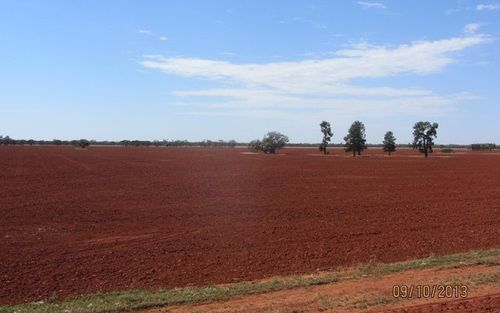 * Ashleigh Downs, Cobar NSW 2835