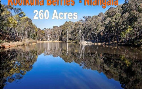 144 Koolkuna Rd, Walcha NSW 2354