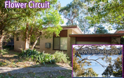 11 Flower Circuit, Akolele NSW 2546