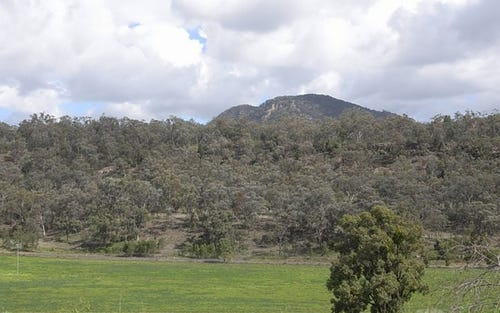 6164 Bylong Road, Rylstone NSW 2849