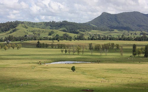 310 Fawcetts Plain Road, Kyogle NSW 2474