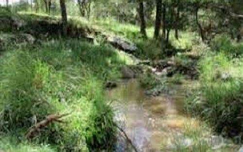 L11 Leslie Creek Road, Drake NSW 2469