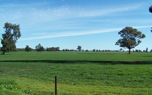 - Koonda, West Wyalong NSW 2671