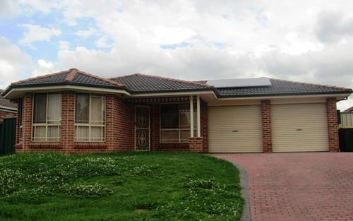 6 Louth Place, Hoxton Park NSW
