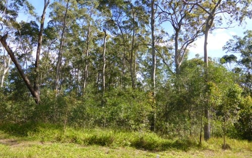 Lot 38 Gecko Road, Woombah NSW 2469