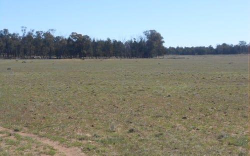 Mascott Adavale Lane, Parkes NSW 2870