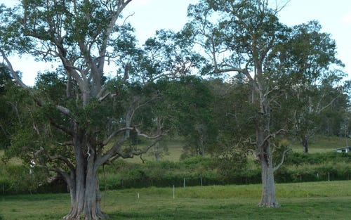 Lot 12 Afterlee Road, Kyogle NSW 2474