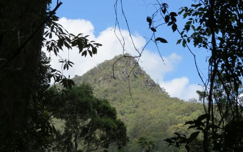 Lot 2, 261 Mount Warning Road, Mount Warning NSW 2484