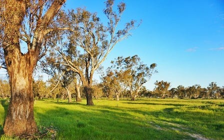 Lot 10 Sturt Highway, Gillenbah, Narrandera NSW 2700