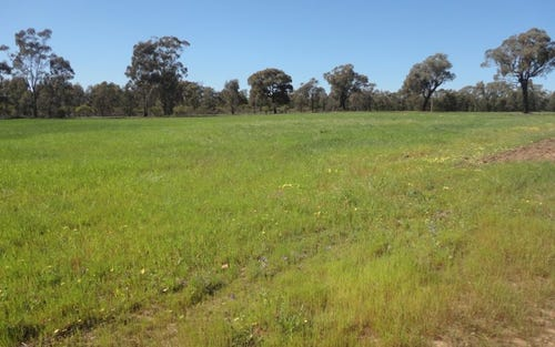 LOT 12 Thanowring Road, Temora NSW 2666