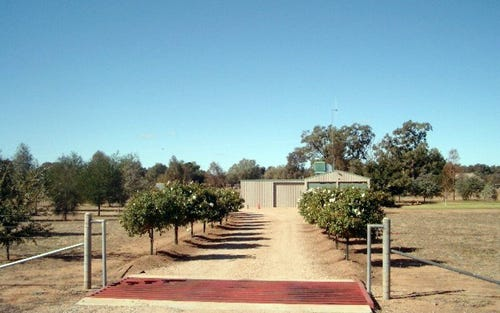 Lot 12 Orange Road, Parkes NSW 2870