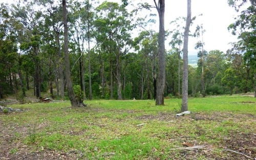 Lot 51 Bald Hills Road, Bald Hills NSW 2549