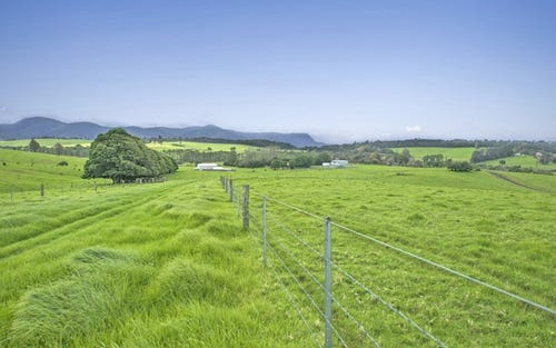 10 Rocky Creek Road, Dorrigo NSW 2453