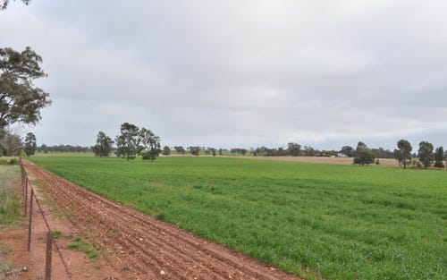 1 Reynolds Lane, Temora NSW 2666