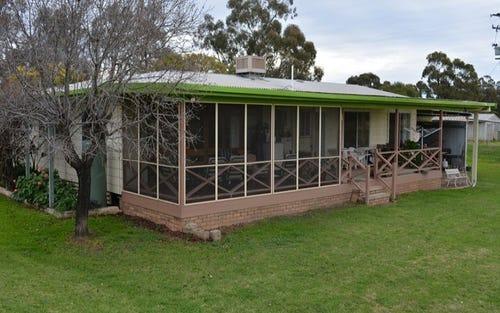 10230 Kamilaroi Hwy, Gunnedah NSW 2380