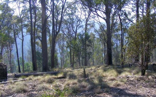 Lot 156 Reedy Swamp Road, Tarraganda NSW 2550