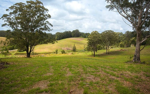 Lot 572 Irvines Road, Newee Creek NSW 2447