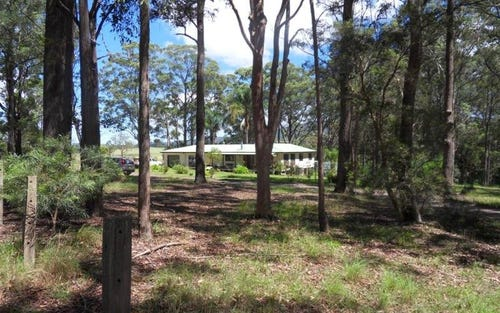 633 Markwell Back Rd, Markwell NSW 2423