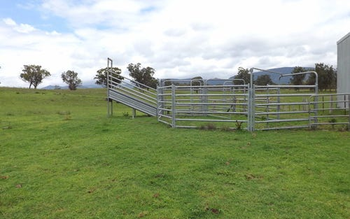 Lot 10 Golden Highway, Jerrys Plains NSW 2330