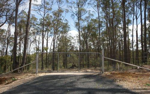 Lot 13 Satinvale Estate, Invergowrie NSW 2350