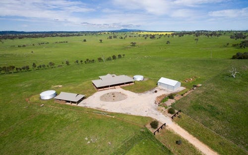 47 YURANIGH ROAD, Molong NSW 2866