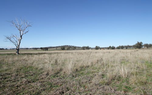 130 Ridout Lane, Gulgong NSW 2852