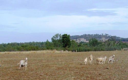 1 Main Road, Woodstock NSW 2360