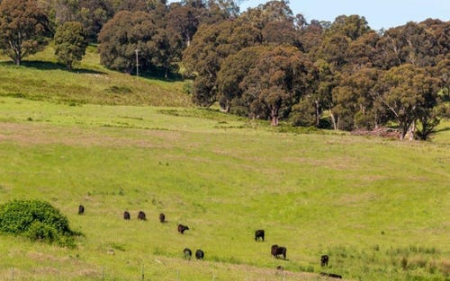 Lot 18 Bannaby Rd, Taralga NSW 2580