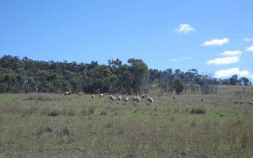 HODGES CREEK, Rocky Creek NSW 2371