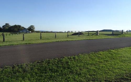5 Pennparc Drive, Windella NSW 2320