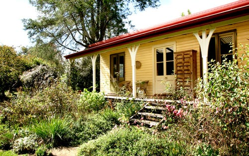 118 Mountain Top Road, Dorrigo NSW 2453