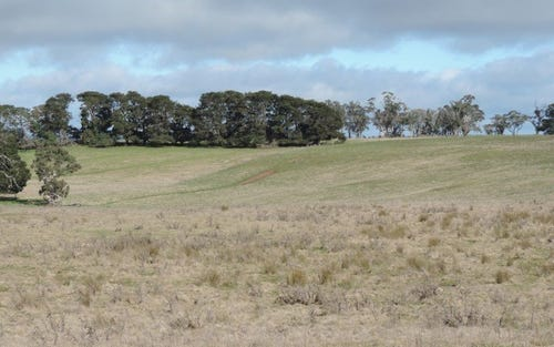 Lot 1 Levels Road, Golspie NSW 2580