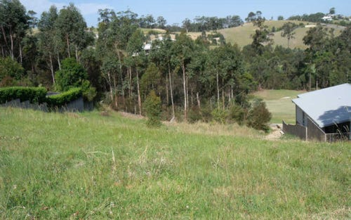 Lot 103, Lot 103 Hilltop Parkway, Tallwoods Village NSW 2430